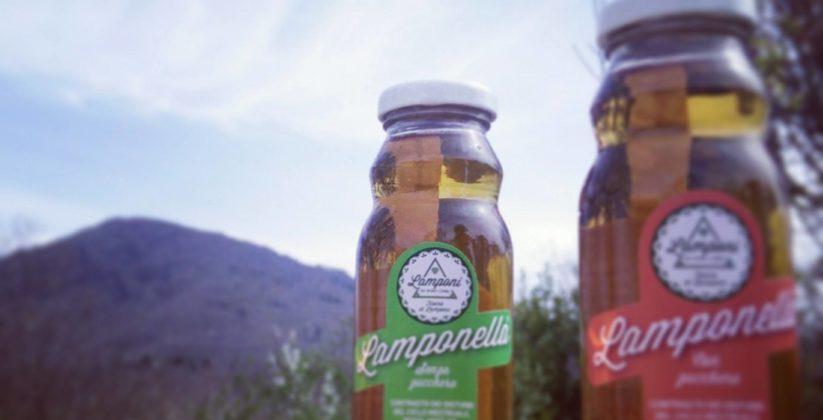 Lamponella