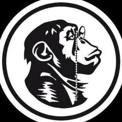 Mr Monkey Acquapendente