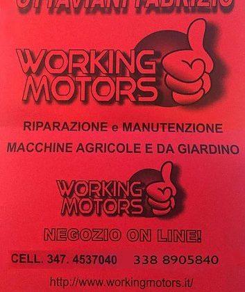 scopri le offerte sullo store working motor online