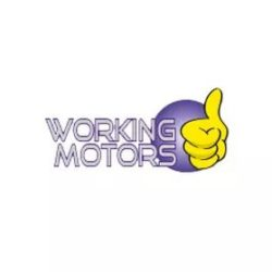 working motors