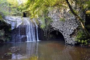 Vitorhiano, alla scoperta del Monumento naturale di…