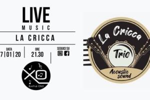 Live Music XO