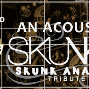 Tributo a Skunk Anansie all Andrew's Pub