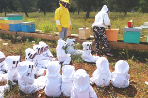 Museo Naturalistico di Lubriano: Il miele, le api e le biodiversità nelle tradizioni della valle dei Calanchi.