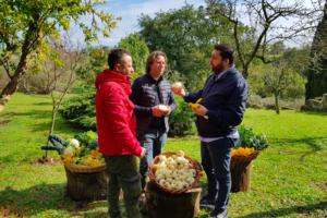 La Cipolla di Nepi, inserita nell'elenco dei prodotti agroalimentari tradizionali della regione Lazio.